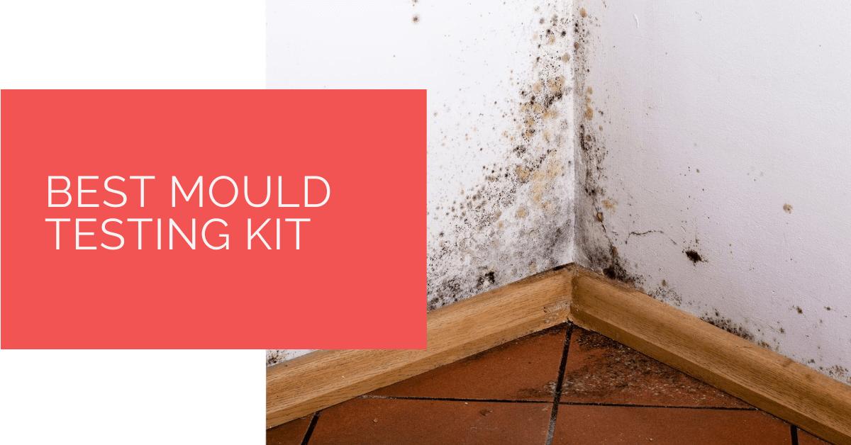Best Mould Testing Kit
