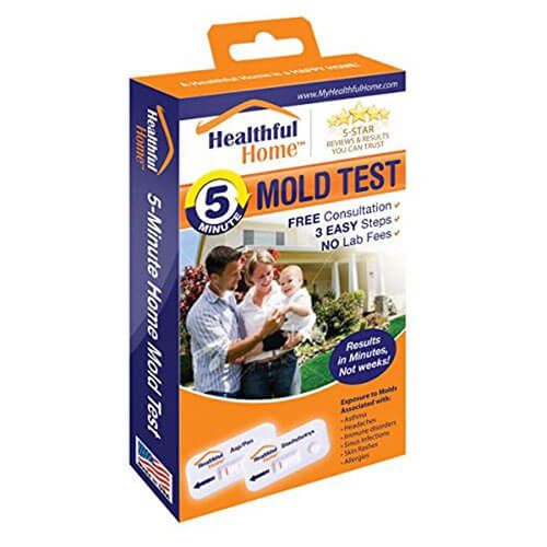 Healthful Home® 5-Minute Home Mold Test