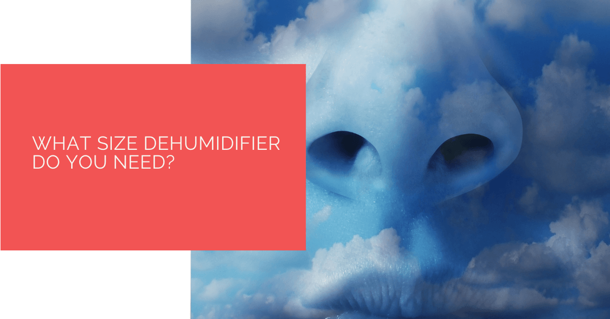 What Size Dehumidifier Do You Need?